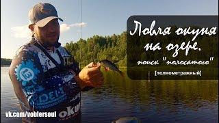 Ловля окуня на озере. Спиннинг с лодки. Микроджиг летом. Рыбалка 2017.