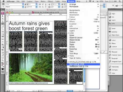 Adobe InDesign - Script/Plug-In Layout Zone for small newspapers