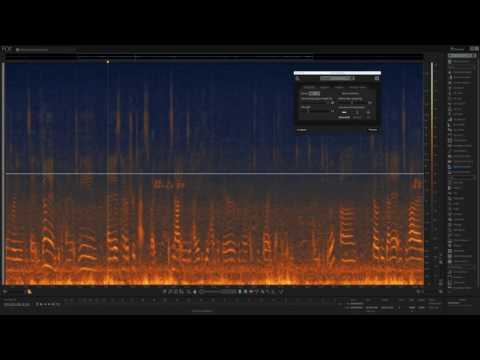 RX 6 | Instantly paint away audio problems with Spectral Repair