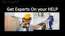 Jamaica Bed Bug Exterminator – Bed bugs Removal Service in Jamaica NY