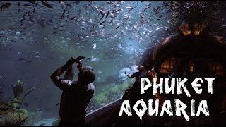 Aquaria Phuket  (аквариум на Пхукете) Aquarium Central Phuket