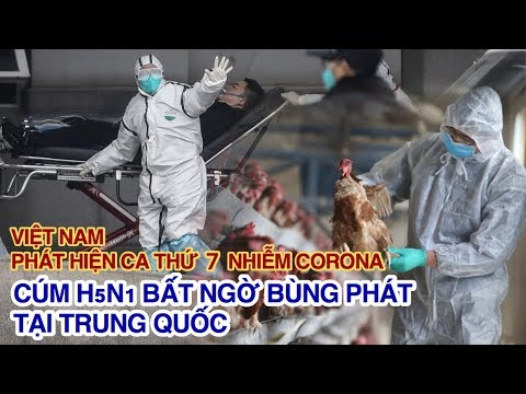 Việt Nam phát hiện ca thứ 7 nhiễm VIRUS CORONA, cúm H5N1 BÙNG PHÁT giữa đại dịch tại Trung Quốc