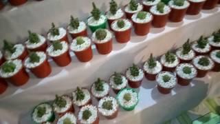 Vlog 2018  brikkho mela/trees exibition at jaidebpur Gazipur