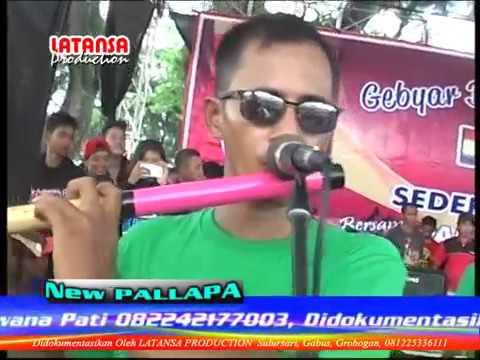 Hanya Satu   Brodin & Ayu Arsitha   New Pallapa Terbaru TPK Sulursari Purwodadi 2016