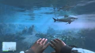 GTA 5 Eaten by a shark first person