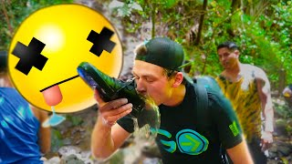 Traveler Chugs Toxin Water in the Jungle to see what occurs (We didn't understand)    NewsBurrow thumbnail
