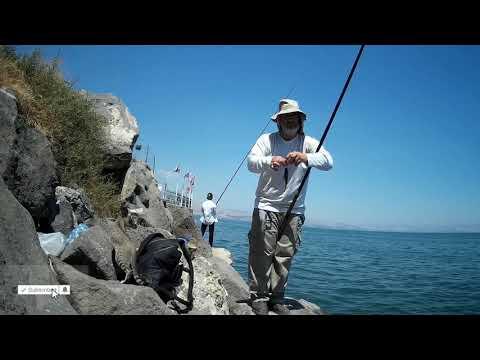דייג בחכת בוס בכינרת עם תירס מתוק כמה כייף לראות מצוף שוקע