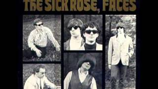 The Sick Rose - everybody wants to know
