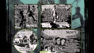 Agathocles | Nauseate - Split CD - 2014