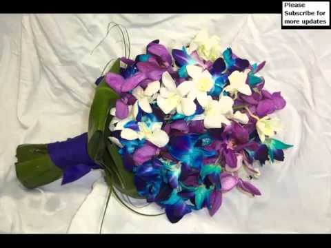 purple-and-blue-orchid-flowers-beautiful-picture-collection-and-ideas