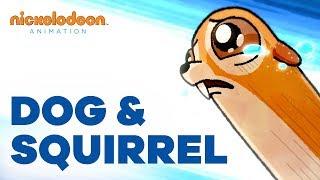 Dog & Squirrel | Nick Animated Shorts