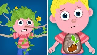 Seed Germination for Kids | What is Seed Germination? |Germination for Kindergarten