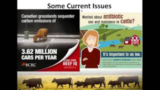 Hormone use in beef cattle: facts, fears, fantasies  (BCRC webinar recording)