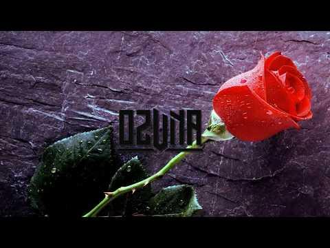 Ozuna - una flor (letra) preview