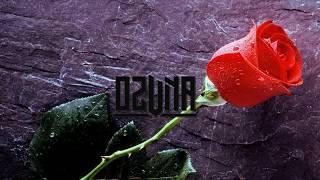 Ozuna - una flor letra preview