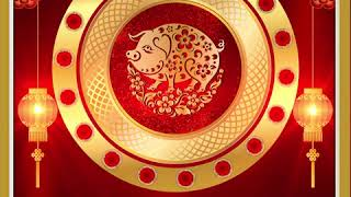 Gong hei fat choy! - YEAR OF THE PIG