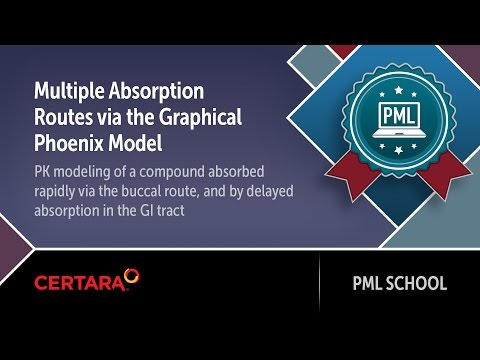 PML School: Multiple Absorption Routes via the Graphical Phoenix Model