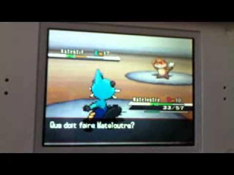 Download 17 Pokémon version noire arène de Maillard combat contre élève Donald.mp4