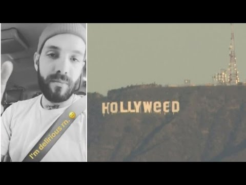 Could This Be The Man Who Gave The Hollywood Sign A Bizarre Makeover?