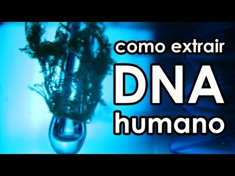 Видео Laboratorio de exame de dna