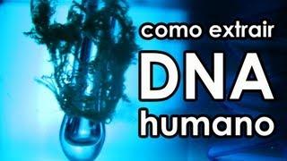 Como extrair DNA humano (EXPERIÊNCIA)