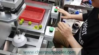 Japanese apricot seed remover machine