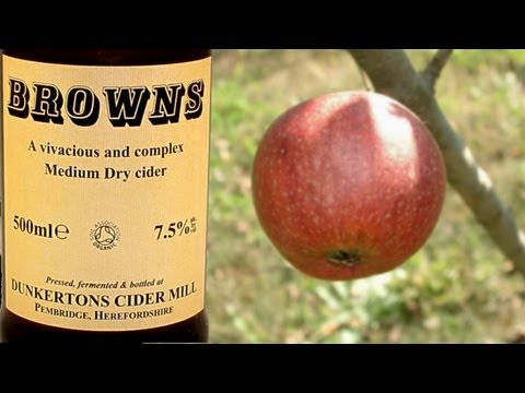 Dunkertons Browns Organic Apple Cider 7.5% cider review