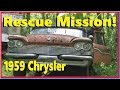 Saved From The Crusher: 1959 Chrysler Windsor!