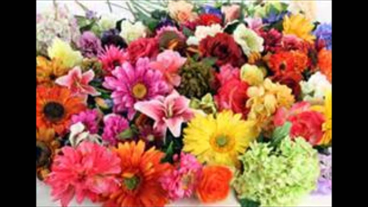 Green Shopping Market Wholesale Silk Floral Flowers 500 Ct Youtube