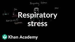hqdefault - Cns Depression And Respiratory Failure