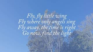 Fly - Celine Dion Lyrics