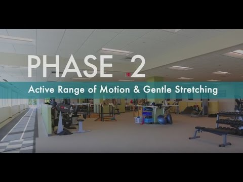Download Rotator Cuff Exercises for Pain Relief   How to Strengthen Rotator Cuff   Phase 2