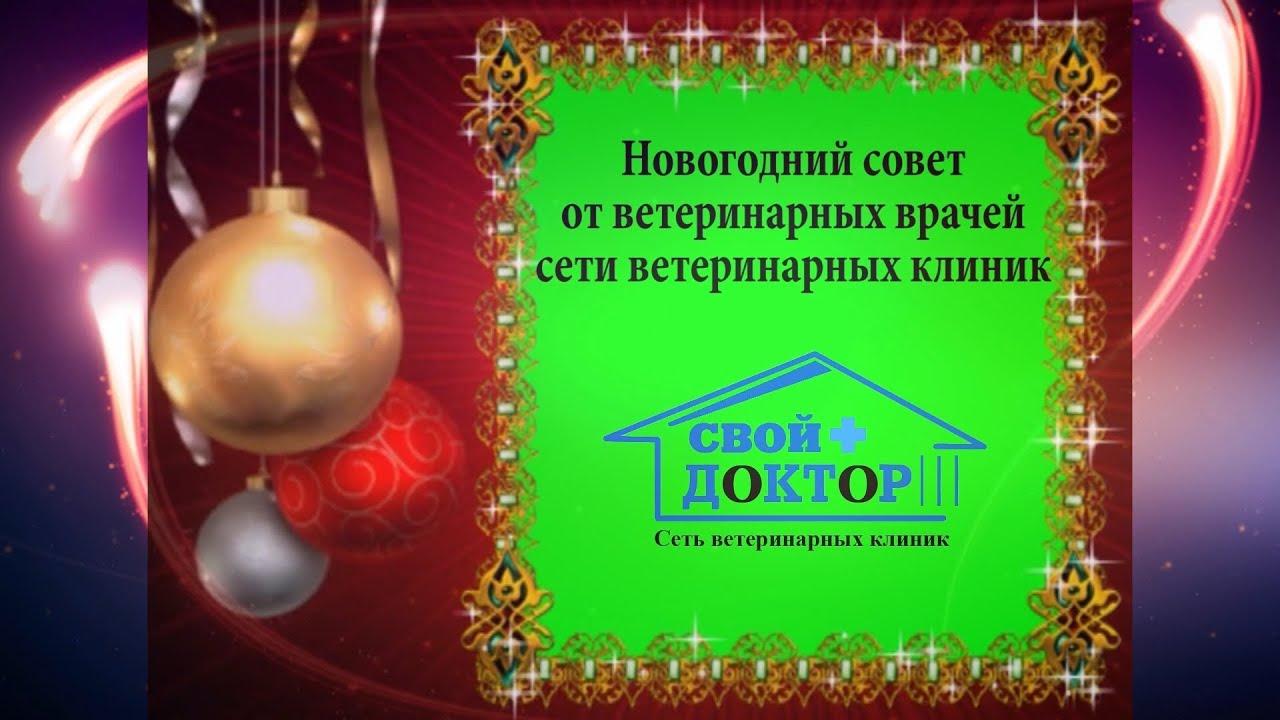 Новый год в санкт петербурге качественные фото манера