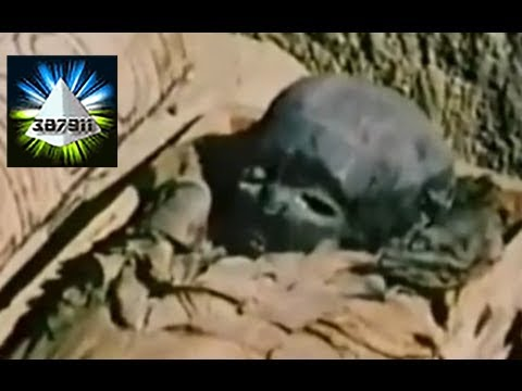 In Search of Ancient Aliens 🔎 Ancient Astronaut Theory UFO Documentary 👽 Outer Space Connection 1