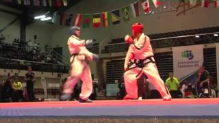 Great Taekwon Do fighters
