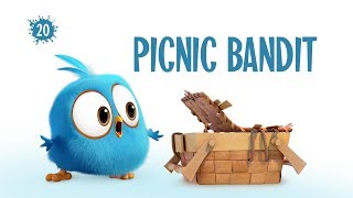 Angry Birds Blues | Picnic Bandit - S1 Ep20