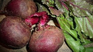 How To Juice Beets Recipe Thumbnail