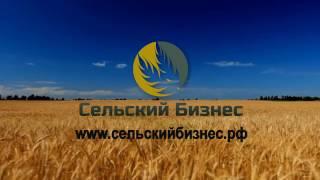 Зарабатывать 500 тысяч рублей в месяц!! Как заработать 500 тысяч в месяц!