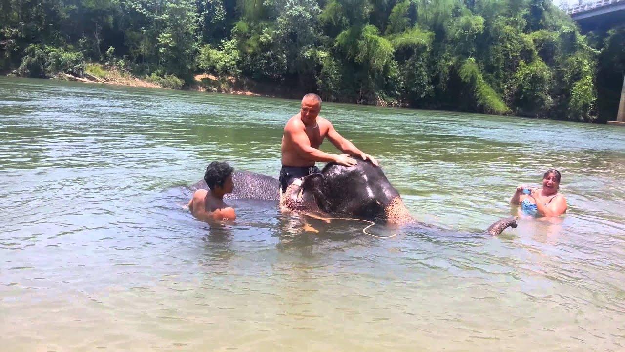 Bath & Swim with Elephant, Thailand - YouTube