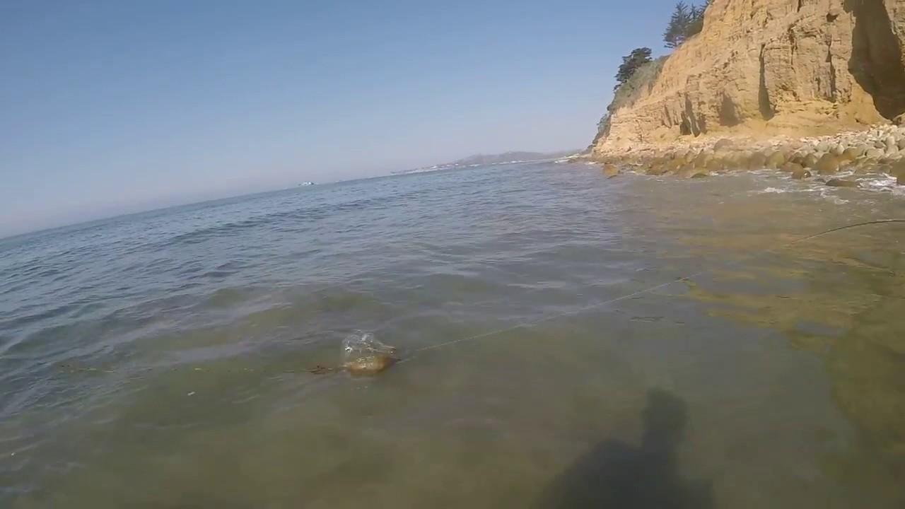 Santa Barbara Surf Fishing Striper - Cost me $799!!! - YouTube