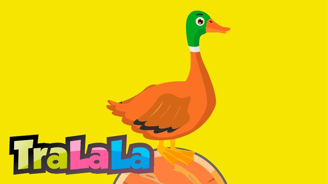 Șade rața pe butoi - Cântece pentru copii | TraLaLa