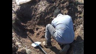 Поисковики ищут родственников бойцов 229 й стрелковой дивизии