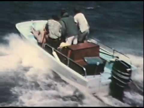FRIENDS a film by MICHAEL PRESSMAN 1967
