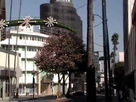 Wilshire Boulevard in Beverly Hills