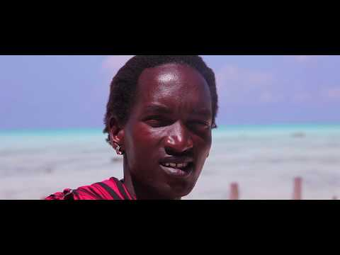 Tanzania travel movie