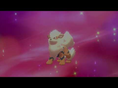 Pokemon Shield How To Evolve Growlithe
