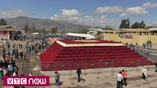 Tháp hoa hồng khổng lồ ở Ecuador | VTC1
