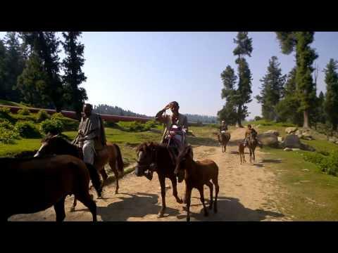 Kashmir (June 2016)
