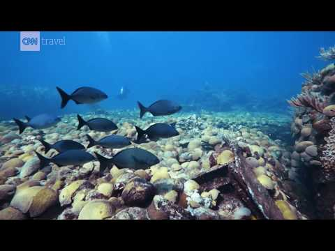 Chartered Waters: Bermuda's hauntingly beautiful shipwrecks