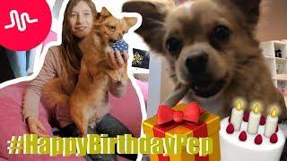 Pep´s 1. Geburtstag und eure Musical.ly #HappyBirthdayPep   Die Emmy